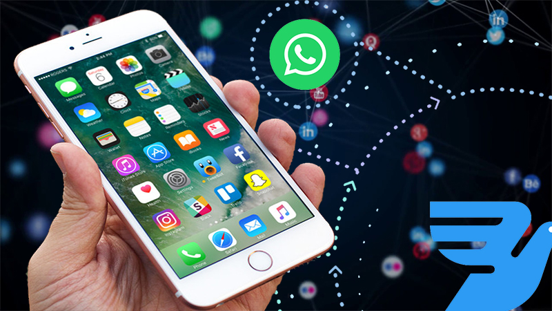 Nobody Knows About These Cool Whatsapp Tricks and Tips