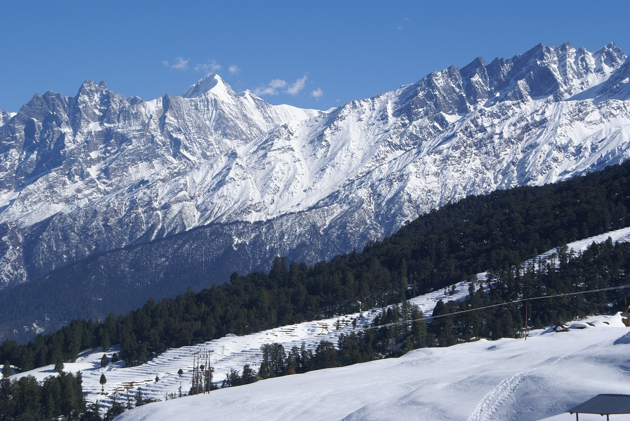 Auli - Best places to visit in india in january with family