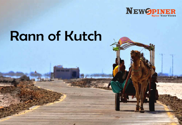 Rann of Kutch - 10 unexplored places in India for honeymoon