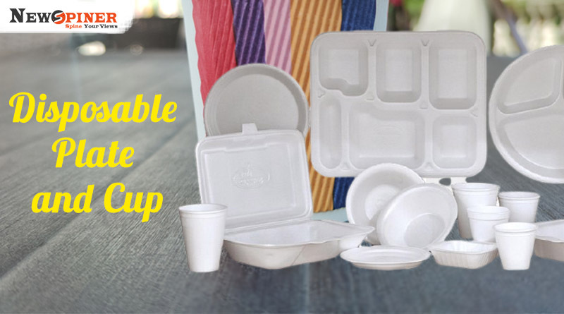 Disposable plate and cup