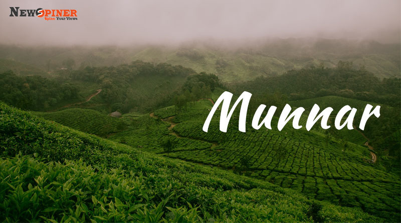 Munnar - Best Places to visit in india in may
