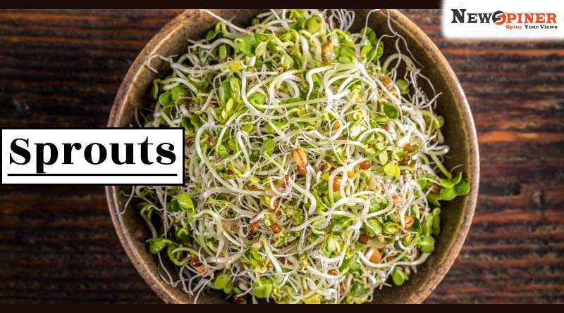 Sprouts - vegetables of summer in india